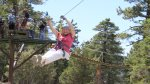Zipline through the trees