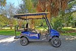 For an additional fee, you can rent our golf cart