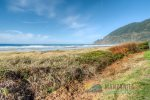 Manzanita Beach is just steps away from the house
