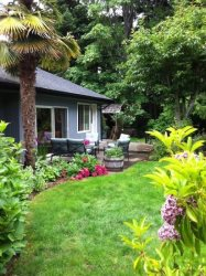 Palm Tree Cottage Rancher is nicely landscaped with Shrubs and Flowers