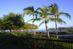 Puako Sandy Beach Villa Palms sway in the gentle tropical breezes here on Big Island