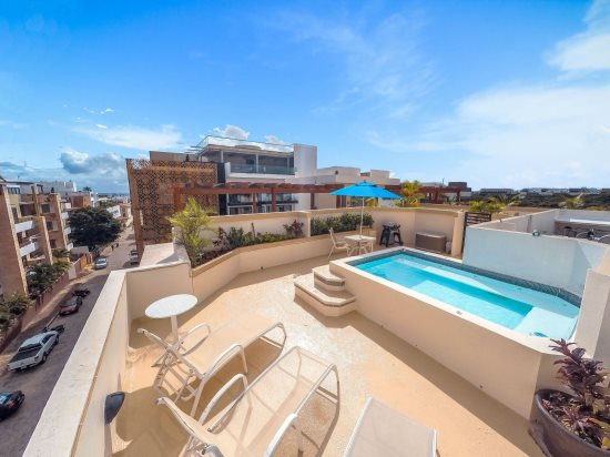 Your private rooftop area with plunge pool, patio tables, lounge chairs and BBQ