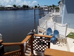 Views Views Views! 2 Bed 1.5 Bath on Canal WIFI One Month Min Pet Friendly Under 20lbs Non Shedding