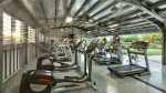 Cardio Machines and Weight Machines and Free Weights