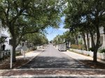 Quiet, tree-lined streets down to the beach are the norm in the gated community of Carillon