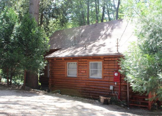 The perfect log cabin surrounded by trees in the heart of Idyllwild