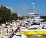 Boat for hire in the Puerto Aventuras marina