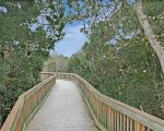 Walkway to the beach from Ocean Reef 306