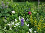 Beautiful Perennial Gardens around the house