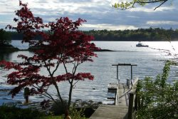 FAIRVIEW COTTAGE| BOOTHBAY MAINE | PET FRIENDLY | SALT WATER RIVER | PRIVATE DOCK & FLOAT |
