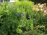 Beautiful gardens throughout the property that are maintained by a professional garderner