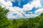Hawk's Hideaway - Great Privacy, Amazing Views of Blue Ridge Mountains
