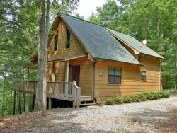 Bucksnort Lodge - The U.S. Forest Preserve is your backyard!