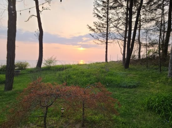 Mill Pond Realty - Vacation Rental - Third Coast Cottage  Pit Schematic Diagram on