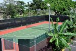 Private tennis/ pickle ball court