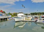 1 Gadwall is within walking Distance to South Beach Marina Shops & Restaurants