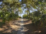 Paved Beach Access Path from 30 Canvasback