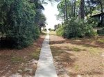 Beach Path from 6 Wood Ibis