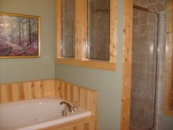 Walk in Shower and Jacuzzi Tub in the Master Bathroom