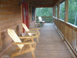 The screened in back porch area.