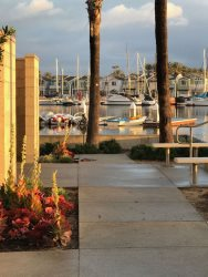 Dock Adjacent To Your Unit - Private Boat Tours Can Pick You Up Directly From Here