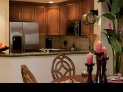 Luxury Condo in Orlando`s Reunion Resort
