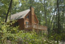 Woodlands Cabin #2