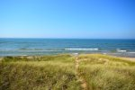 Gas Grill Available