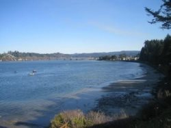 Ambers Point Of View - View Of  Alsea Bay and Crab Boats
