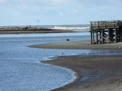 Dock Of The Bay 308 - Siletz Bay