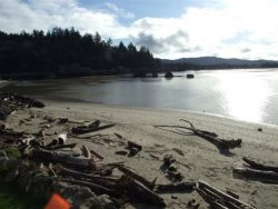Dock Of The Bay 308 - Driftwood Creek and Siletz Bay