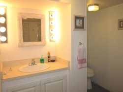 Anchor View - Lower Level Street Level - Bathroom 2 with walk in shower, vanity