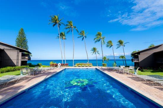 Oceanview 1 Bedroom 1 Bathroom Condos In Lahaina Maui Hawaii Maui Condo Vacation Rentals At Kaanapali And Honokowai Coconut Condos