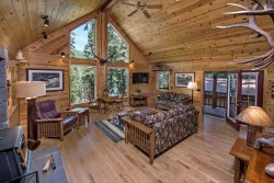 The perfect tree'd view from large vaulted ceilings with beautifully tall windows!
