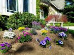 Beautiful gardens with flowers and variety of roses and plants