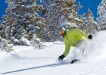 Ski and board nearby Snowbird and Alta resorts - only a 10 minute drive to Big and Little Cottonwood Canyons