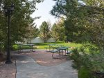 Common area park area next door sideyard of home 1 with picnic table, BBQ, trees