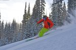 Ski greatest snow on earth - minutes to Solitude, Brighton, Snowbird, Alta resorts