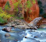 The Vrigin River and the Narrows at Zion National Park is a must see