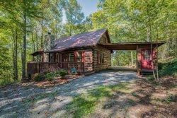 Blue Ridge Lake Nottely Ocoee Amp Toccoa River Cabin Rentals