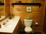 downstairs bath-Ocoee River cabin rentals