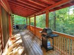 Blue Ridge area cabin with a woods view