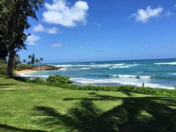 Magical Oceanfront Resort - Kapaa Sands 19