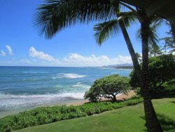 Your view of the coast line from the lanai