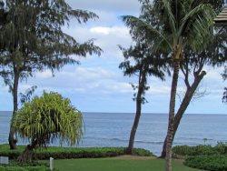 Ocean Views 221