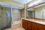 Master Bathroom Walk in Shower and Soaking Tub
