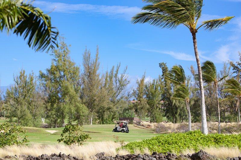 Condo Vacation Rental in Hawaii | Waikoloa Beach Resort ...