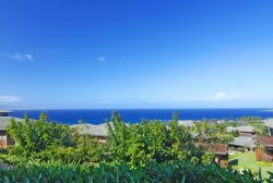 Quiet privacy with sensational ocean and coastal vistas!