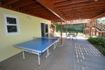 Lower level patio with ping pong table