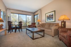 Pines Condominium 2051 - newly remodeled, great views and awesome pool/hot tub area, on shuttle route!